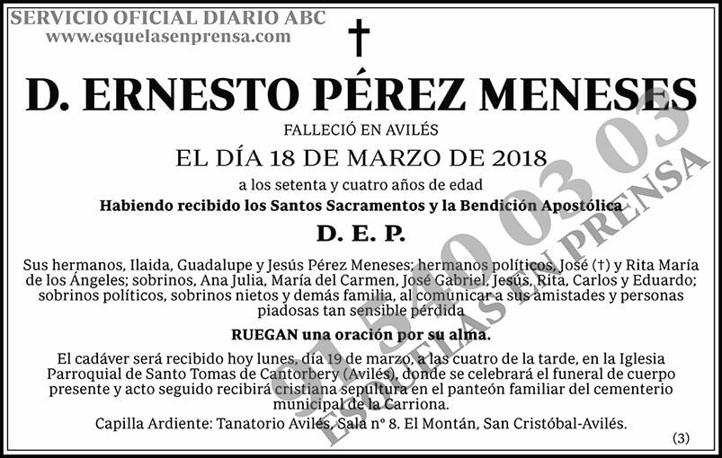 Ernesto Pérez Meneses